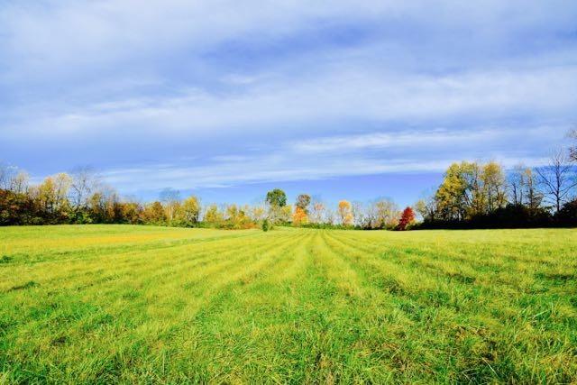 Property for sale at 3105%20Paris%20Pike,%20Lexington,%20KY%2040511