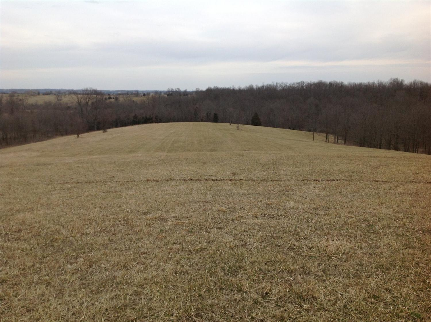 Lot 6 Junction Farms Ln Cynthiana, KY 41031