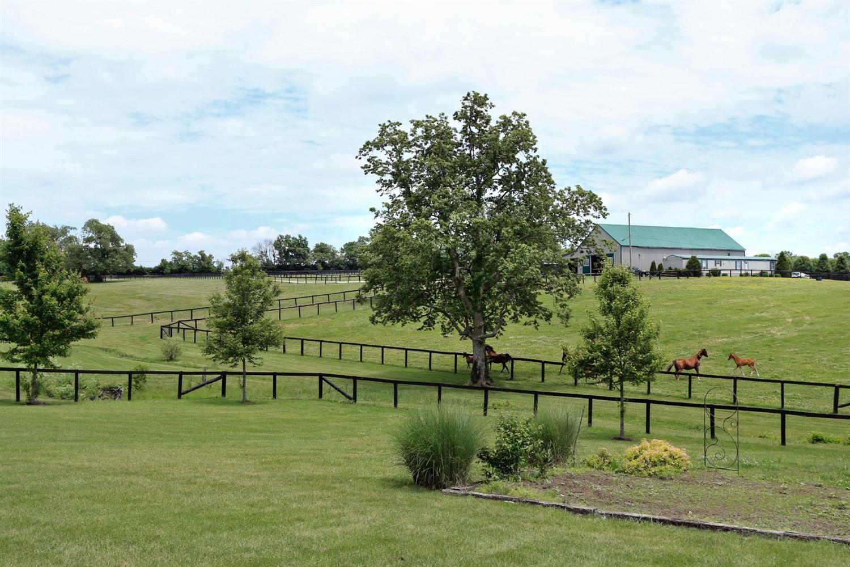 Kentucky Horse Farm For Sale