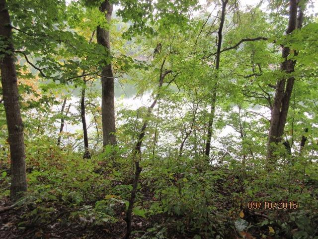 Beautiful%20secluded%208+%20acre%20tract%20with%20322'%20of%20water%20front%20on%20Herrington%20Lake.%20Great%20spot%20for%20your%20lake%20front%20hobby%20farm.