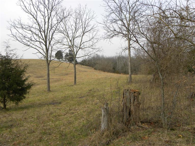 Wonderful%2036%20acre%20property,%20mostly%20fenced.%20%20Gently%20rolling.%20Some%20cleared.%20Some%20woods.%20%20Hunter's%20delight%20or%20great%20for%20horses%20or%20cattle,%20and/or%20to%20build%20your%20dream%20house.