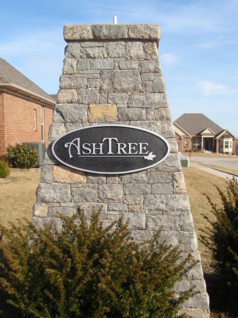 Ash+Tree  Subdivision