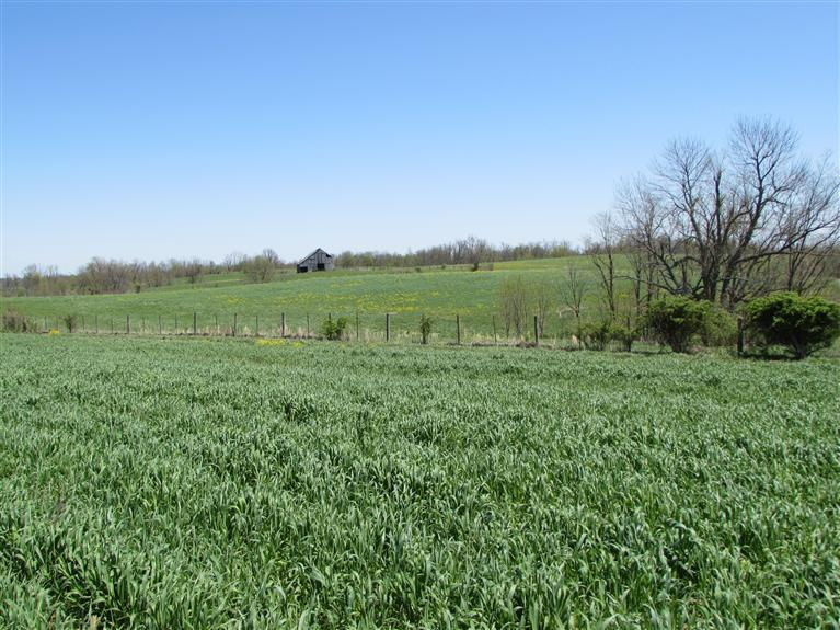 Rural Subdivision Mt%20Sterling KY