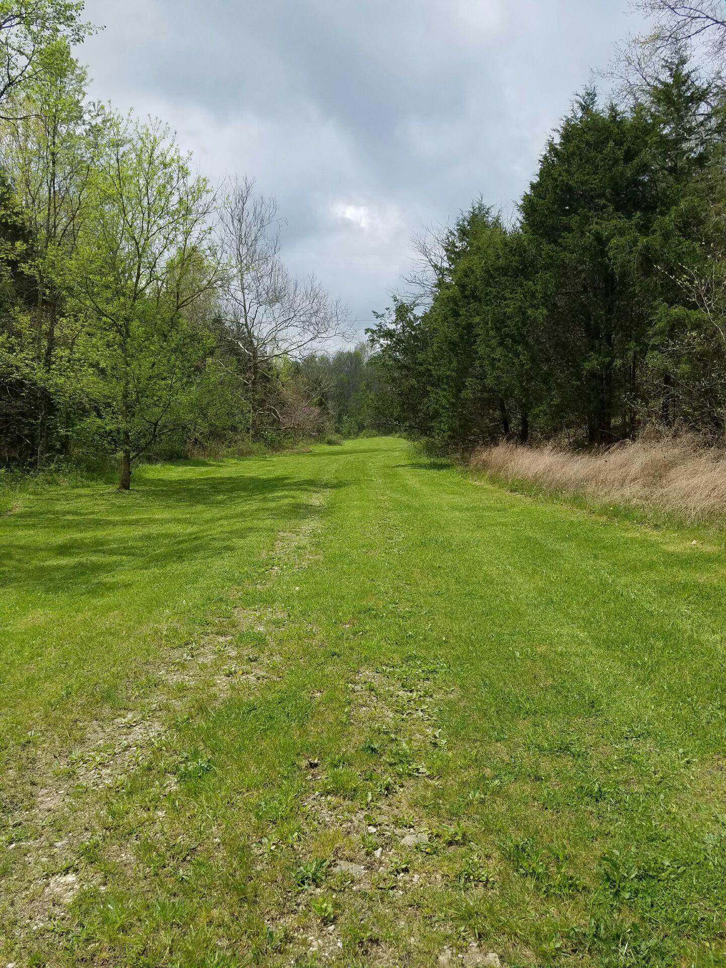 20%20park-like%20acres%20of%20field%20and%20forest.%20%20Flowering%20plum,%20redbud,%20oak,%20locust%20and%20lots%20of%20turkey%20and%20deer.%20Great%20for%20a%20retreat,%20hunting%20or%20other%20outdoor%20recreation.%20%20Several%20new%20outbuildings%20on%20the%20property%20including%20one%20currently%20used%20as%20a%20cabin.%20The%20cabin%20and%20run-in%20shed%20have%20gutters%20and%20are%20ready%20for%20rain%20barrels.%20There%20is%20no%20realty%20sign