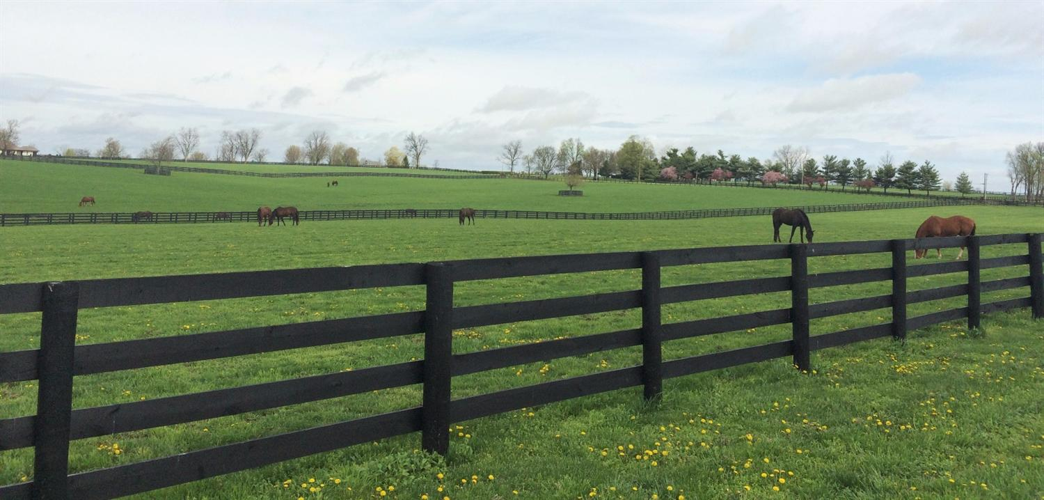 Property for sale at 2494%20Old%20Lemons%20Mill%20Rd,%20Lexington,%20KY%2040511