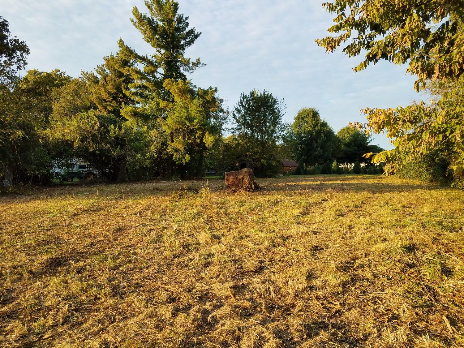 LOOK%20at%20this%20fantastic%20potential%20building%20site%20located%20in%20eastern%20Fayette.%20One%20acre(+-)%20located%20inside%20urban%20service%20area%20minutes%20from%20Hamburg%20shopping.%20surrounded%20by%20large%2010+%20acre%20lots.%20currently%20has%202%20bedroom%201%20bath%201950s%20home%20with%20all%20hardwood%20floors%20and%20plaster%20walls.%20Rent%20until%20you%20build.%20Wide%20deep%20lot%20is%20gently%20sloped%20for%20perfect%20drainage%20and%20the%20elevation%20above%20the%20roadway%20provides%20privacy%20and%20good%20drainage%20for%20a%20basement.%20Mature%20trees%20envelop%20the%20perimeter.%20Two%20car%20detached%20garage%20of%20block%20construction%20can%20be%20serviced%20to%20provide%20security%20and%20storage%20for%20construction%20items.%20Property%20is%20bordered%20to%20the%20north%20by%20Barkers%20Christmas%20tree%20farm,%20and%20to%20the%20east%20and%20south%20by%20open%20hay%20fields%20of%20a%20farm.%20Overgrown%20portions%20being%20cleared%20now%20so%20pictures%20will%20be%20available%20soon.%20Builder%20inquiries%20welcome.%20Great%20location%20and%20size%20for%20a%20Luxury%20home.%20Property%20is%20adjacent%20to%20Todds%20Station.%20Septic,%20but%20sewer%20may%20be%20available,%20as%20pressure%20line%20is%20accessible.%20No%20HOA%20fees,%20HOA%20restrictions.%20FREEDOM!