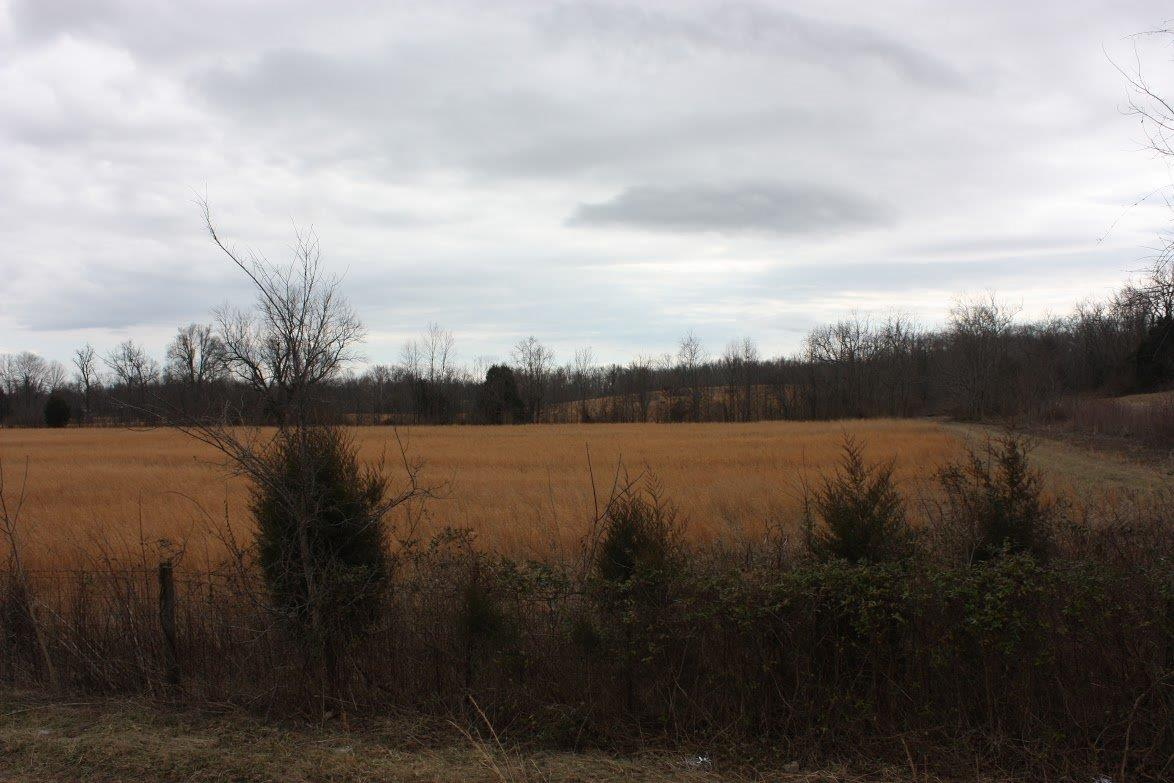 Great%20opportunity%20on%20a%2040+/-%20acre%20farm%20or%20could%20possibly%20be%20subdivided%20into%20multiple%20tracts.%20Property%20is%20conveniently%20located%20on%20HWY%2052,%20only%20minutes%20from%20the%20bypass%20in%20Richmond%20and%20the%20East%20gate%20entrance%20to%20the%20Blue%20Grass%20Army%20Depot