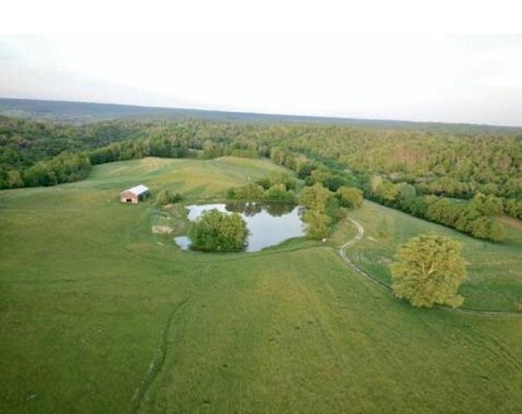 Lexington Real Estate Bald Knob
