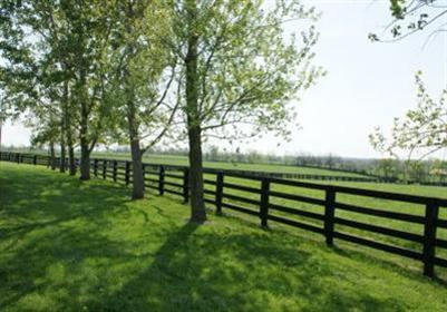 Picturesque%20horse%20farm%20in%20immaculate%20condition.%20%20Brick%20ranch%20home%20with%203%20bedrooms/2%20full%20baths.%20%2013%20stall%20horse%20barn%20(wrapped%20in%20metal)%20with%20adjacent%20round%20pen%20and%2028'%20x%2036'%20metal%20equipment%20building.%20%20Near%20Adena%20Springs%20and%20adjoining%20Blanford%20Park.