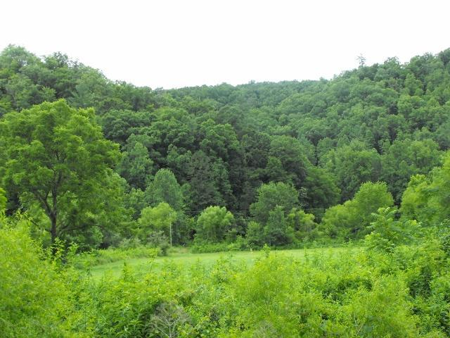 Property for sale at 3886%20South%20Fork%20Rd%20Stanton,%20KY%2040380
