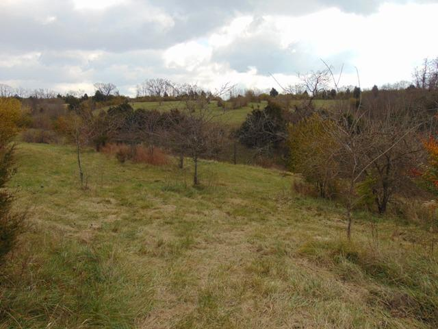 210%20acres%20in%20the%20city%20limits%20of%20Richmond,%20Located%20less%20then%202%20miles%20off%20I-75%20exit%2087.%20Perfect%20location%20for%20a%20subdivision.%20Property%20can%20be%20subdivided.