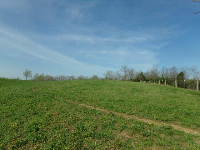 Spectacular%20views%20in%20every%20direction!%20%20This%20farm%20is%20a%20rare%20gem%20located%20in%20Madison%20County.%20155+/-%20acres;%20large%20tobacco%20barn;%204%20seasonal%20ponds;%20electric%20and%20water%20on%20farm;%20water%20tank%20for%20cattle;%20currently%20farmed%20hay%20and%20cattle;%20creek%20at%20bottom%20border%20of%20farm.%20%20Cleared%20pastures,%20wooded%20area%20too.%20%20Private%20location%20with%20abundant%20wildlife.%20%20Perfect%20for%20your%20dream%20home%20or%20a%20quick%20get%20away%20from%20city%20life!