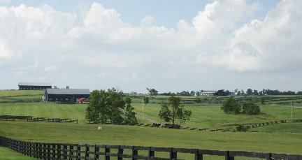 Rural Subdivision