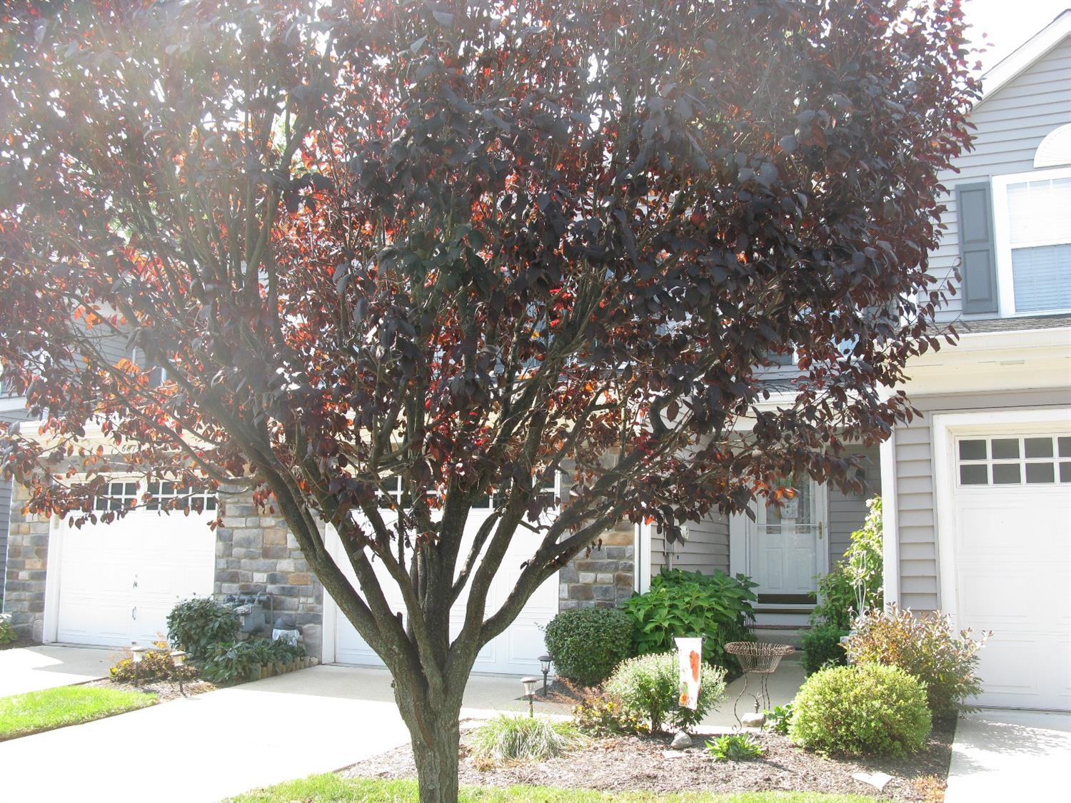 Property for sale at 6876 Sandharbor Court, Hamilton Twp,  OH 45039