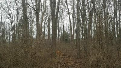 Property for sale at 0 Tulip Drive, Deerfield Twp.,  Ohio 45140