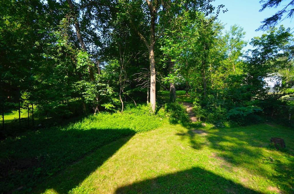 And here is a look out over the very large wooded back yard.  This quarter acre lot is 223 ft deep from the street.  Where else in the city will you get this?!
