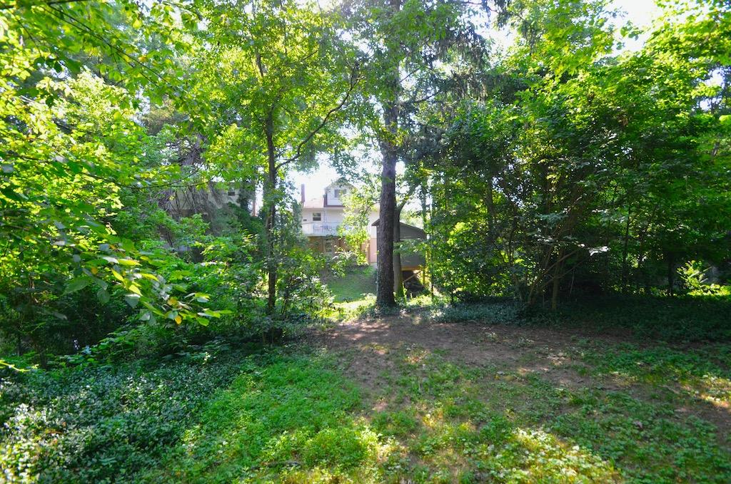 Looking back at the house from the deep back yard.  Plenty of room for play, pets, gardening, chickens - you name it!