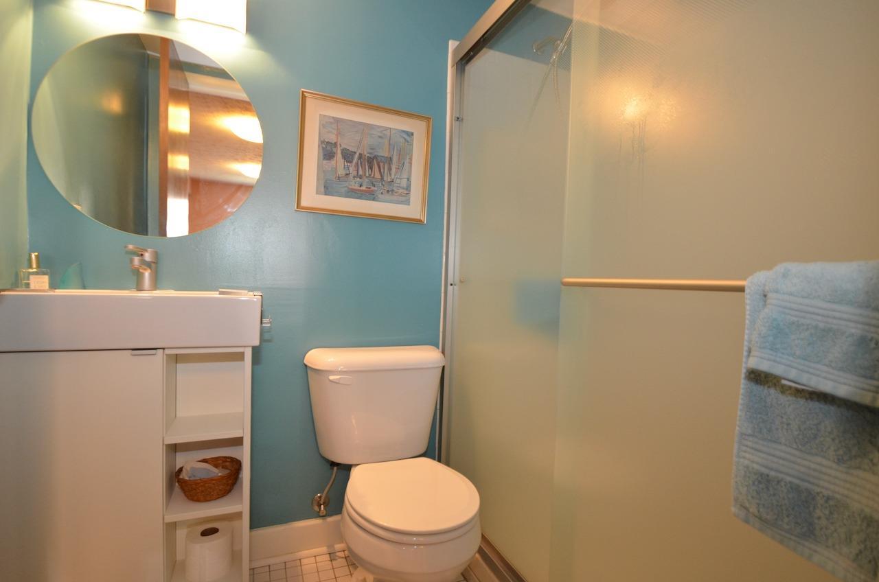 Updated full bath on lower (family room) level.