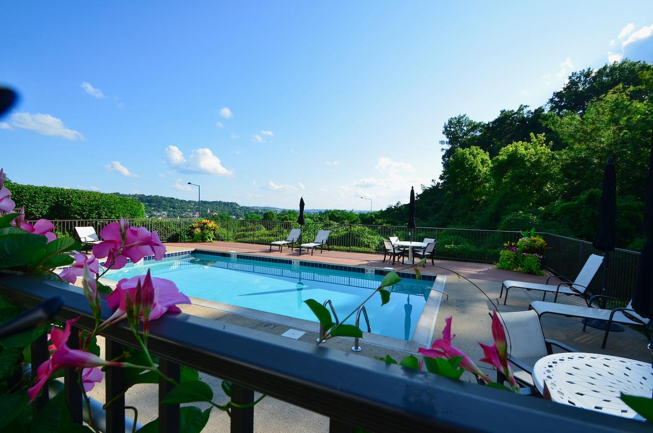 The POOL!  From this lush landscape and tree surround, you would never in a million years guess you are in the city!