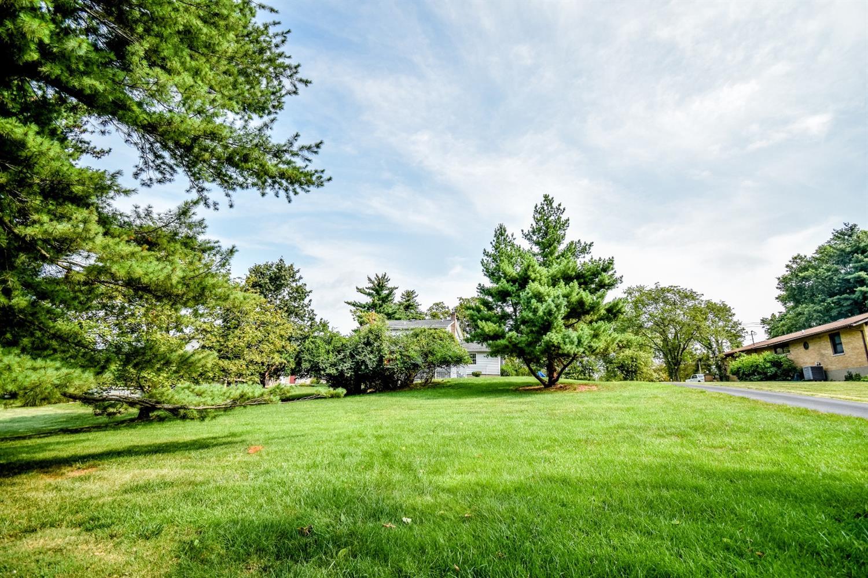 Flat 1/2 acre yard!