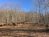 3124 Randalls Run Road, Brushcreek Twp, OH 45616