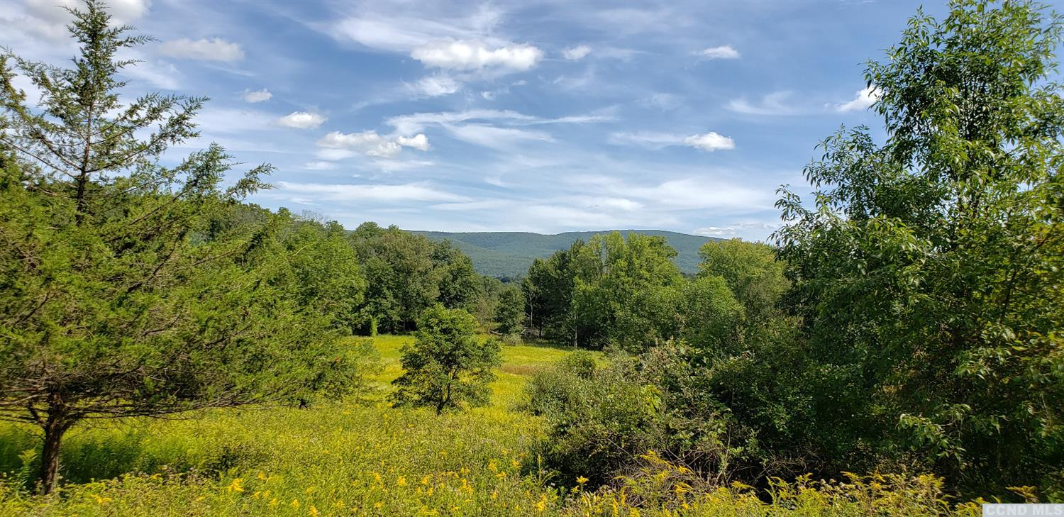 The views are spectacular! Looking North, East, and Southeast along the Taconic Mountain Range. Come build your dream home on this beautiful and private land. The property is mostly cleared of trees yet bordered on all sides by large mature trees that provide a good site barrier. This gives you an option of building on the upper portion of the property that gives you a panoramic far reaching view of the Taconic Mountain range or building on the lower easterly portion that runs  along the Roeliff Jansen Kill for over 1/2 mile. Less than 2 hours from NYC Centrally located to Hudson, Millerton, Copake, Hillsdale and Great Barrington, MA. Two lots being sold together.