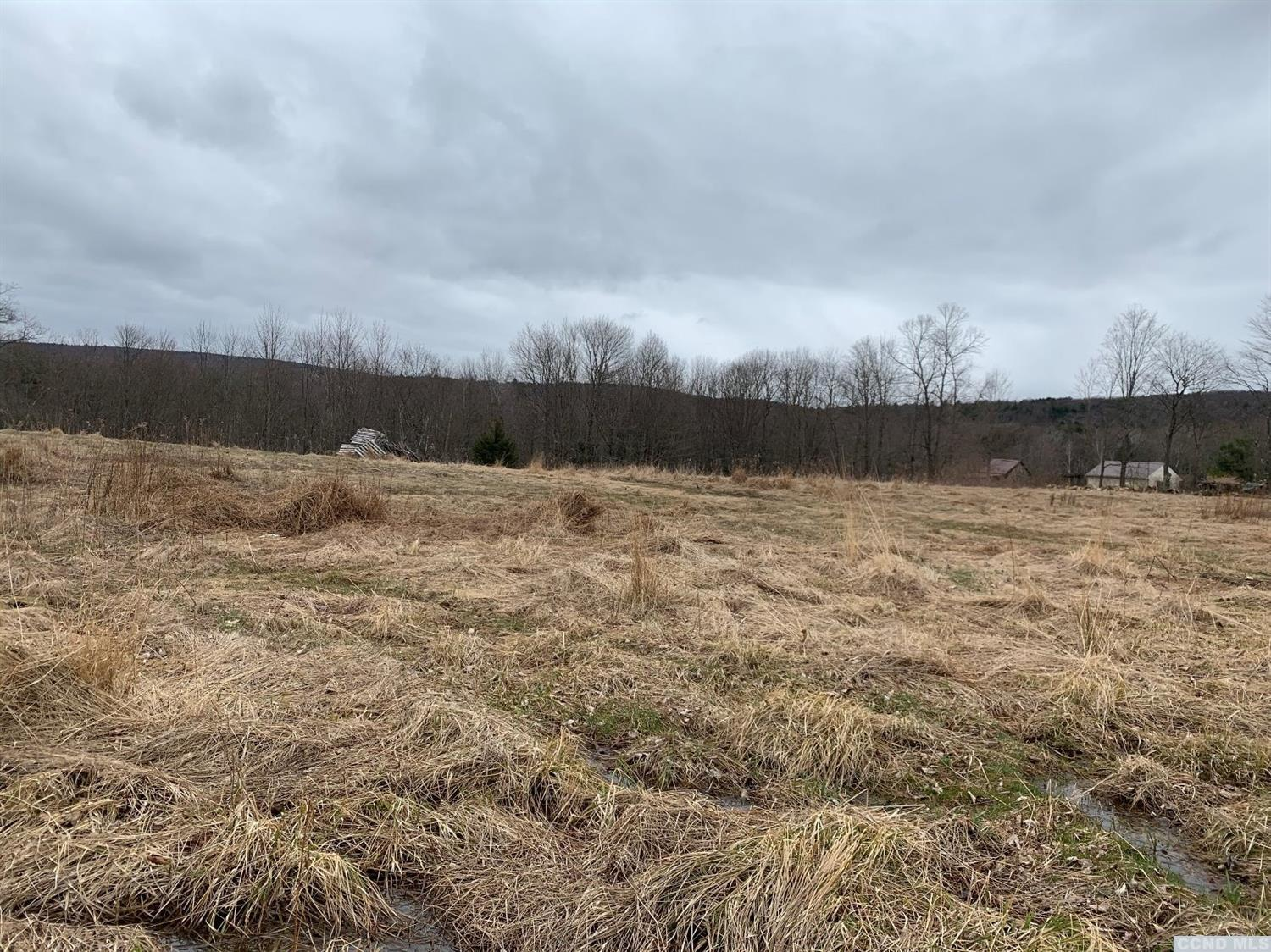 Nice building lot in the front with road frontage.  Site has been perced.  The land slopes down to the Tsatsawassa Creek with camping potential.  Secluded and peaceful your own little retreat.<br>Area of nice homes, close to skiing at Jiminy, the Berkshires and only about 20 minutes to Albany.