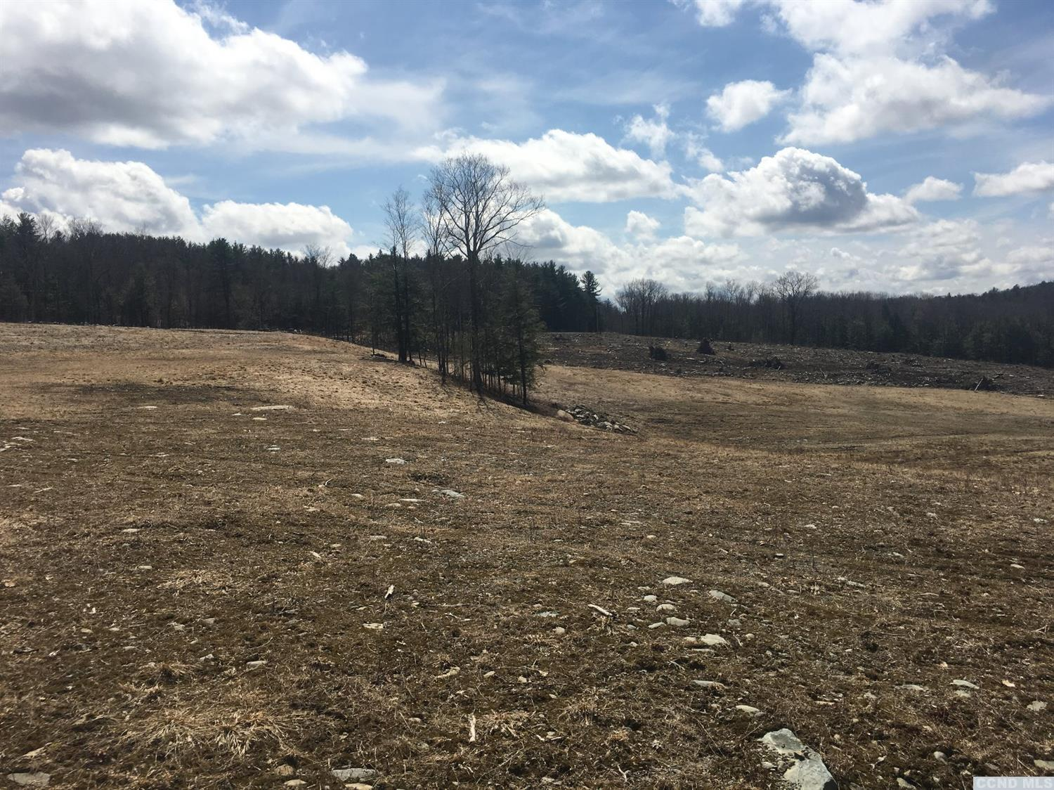 Cleared building lot with views of the Catskills. Owner financing.  Country road within 30 minutes to Albany, Berkshires, Parkway and Thruway.  One of a 5 lot subdivision.