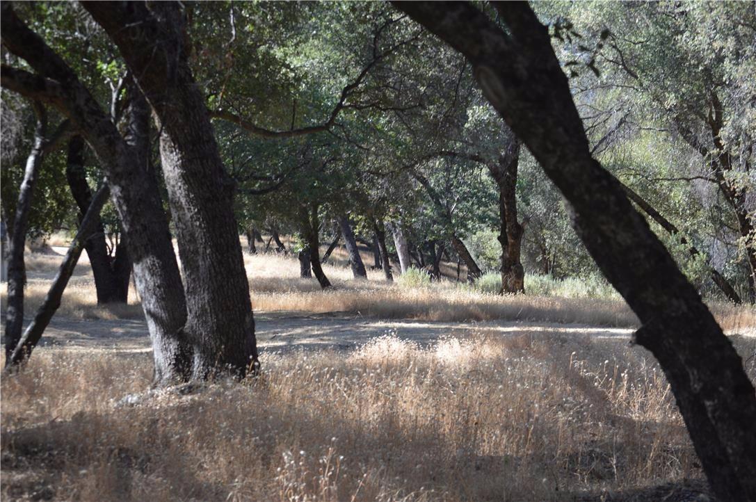 4 Woodcrest Dr, Oakhurst, CA, 93644