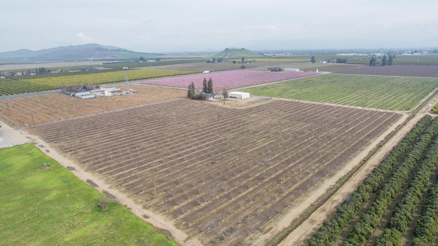 Zoned RM2 (see letter from Dinuba City Planner, attached) 10 acres  all together 8 acres planet to white flesh nectarines, 2,400 sqft home remodeled. Beautiful pool, covered patio with ceiling fans, security gate and extra lights with 2 acres +/- fenced in area. 40x60 shop with 2 phase wiring. Trees are currently leased. 3 water wells; 2 domestic and 1 Ag. Lots of information, call to learn more for this potentially high income property for the right buyer.