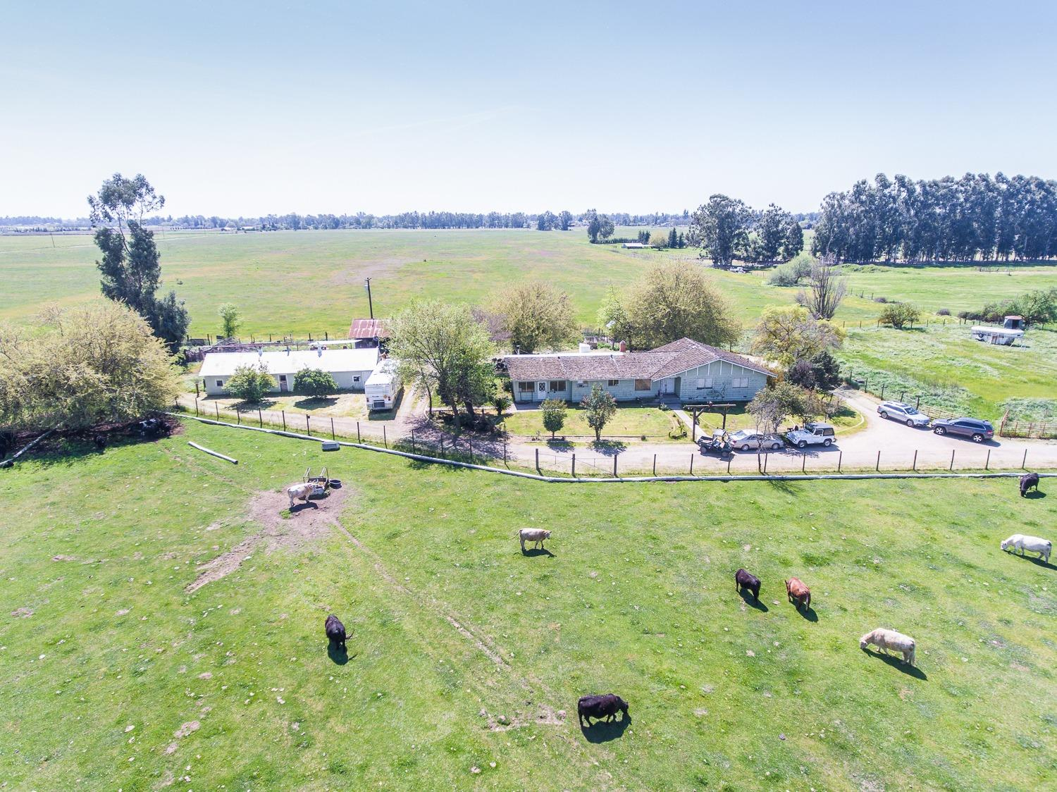 Perfect Site for a Beautiful Equestrian Facility!  This exquisite 20-acre property featuring two creeks meandering through makes it a picturesque setting for an extraordinary Equestrian Ranch.  Located a few blocks from New Home Developments and in path of growth including the new CUSD Janet L Young Elementary School at Shields/Locan due to open this year. It resides within the Clovis Unified School District which strives to be America's benchmark for excellence in education. This property has endless possibilities and an Equestrian Facility  would be a major asset to this community!  The property includes a 2473 s.f House, 60' Pole Barn,  Shop and other Outbuildings.   Two-phase Well: 750 GPM, 1-5 Horse plus FID Water Rights.  The property is fenced.   Dog Creek and Redbank Creek join on the property. No value is given to buildings on the property. Please Call me for more information.  See Virtual Media Aerial Tour!