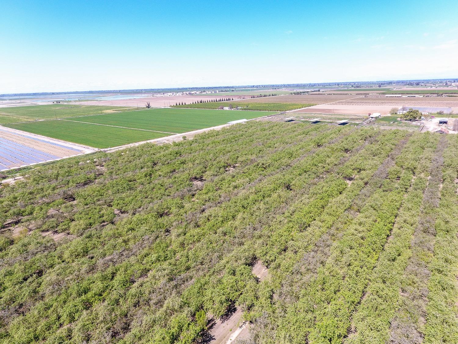 92.64 acres w/FID water rights.  Seller will discount purchase price if providing seller financing.  Property includes 2 Ag wells with 92' standing water.  Well on North Ave, 350' deep +/-, with 25 HP submersible pump; Well on Blythe Ave, 20 HP centrifugal pump, recently added 20' of new casing.  Residence at 3235 S. Blythe, 1200 sq.ft., new roof and AC, includes 6'' pressure system/residential well @ 400' +/-, with 3 HP submersible pump and 86 gallon tank. Residence at 4491, 1000 sq.ft., newer roof and AC, includes 8'' pressure system/domestic well @ 126 ft. +/-, 2 HP new submersible pump, standing water at 89', new 1,500 gallon septic.  Almond Orchard is 39.39 Acres +/-, approx. 19 years old, pipelined, tree spacing 22' x 20', 50% Nopareil; 25% Carmel; and 25% Aldridge.  38.50 Acres +/-, pipelined.  14.75 Acres +/- Former Dairy 20 years ago.  All information was gathered from tax records and seller.  Buyer to verify.
