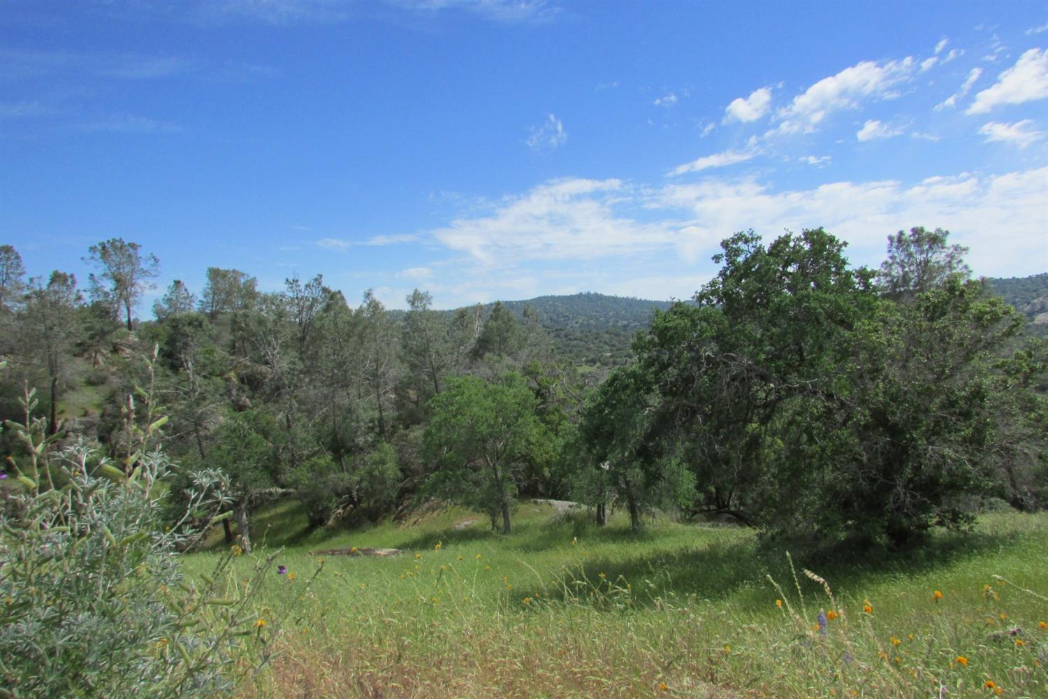 0 Long Hollow Ct, Coarsegold, CA, 93614