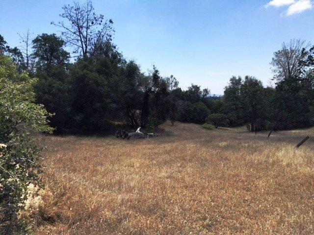 39.12 AC East Mesa Vista Lane, Coarsegold, CA, 93614