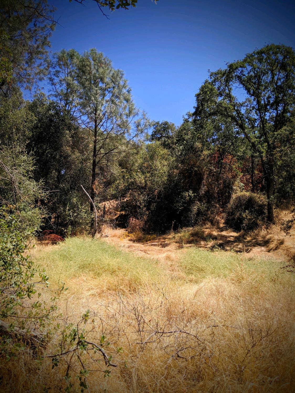 0 Paloma Rd, Coarsegold, CA, 93614