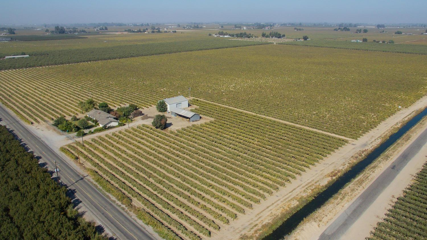 60 Acres, Vines, CID, Well Water, 40x40 red wood framed storage metal shed. Just West of HWY 43, and 99. Great Location Priced to sale. All the important features a Farmer needs. 2 sources of Water, location to easy access to the major Freeways, and located in the central Valley. please only drive by no stopping, make an appointment to walk the land with an agent.