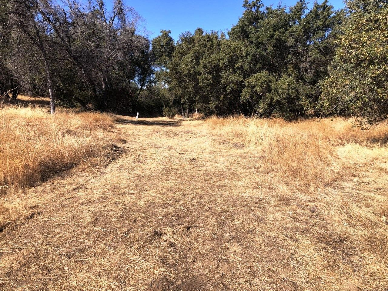 Looking for a great property to build your dream home?  Look no further!  This 3.97+/- acre parcel is in a great neighborhood with a private well with 2HP motor at well pump, septic and power right at the property.  Just bring your house plans and get ready to enjoy the peaceful views and large trees!