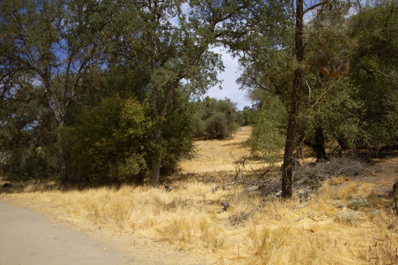 Lovely 1.16+/- acres in Yosemite Lakes Park! Enjoy an easy build here with paved road access, electric at the street, water hook up available and septic. Come and walk among the trees and rock outcroppings to pick just the right angle for the picturesque view from your dream home! Yosemite Lakes Park offers golf course, community pool and spa, tennis courts, equestrian center and a clubhouse with several restaurants including the Blue Heron and Fairway Cafe. Be a part of a great community atmosphere here and it's a great location for commuting to Fresno!