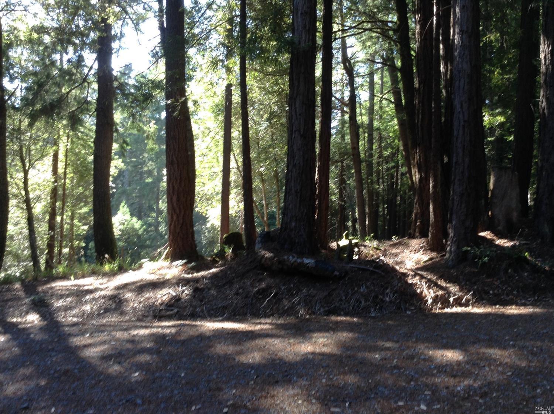 Listing 21816848 : 22047  Rust Drive, Timber Cove, CA, 95450  (photo 44)