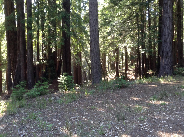 Listing 21816848 : 22047  Rust Drive, Timber Cove, CA, 95450  (photo 41)