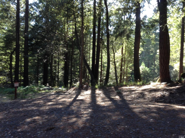 Listing 21816848 : 22047  Rust Drive, Timber Cove, CA, 95450  (photo 43)