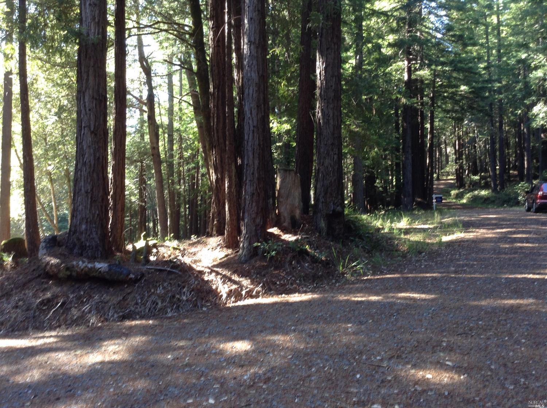 Listing 21816848 : 22047  Rust Drive, Timber Cove, CA, 95450  (photo 45)