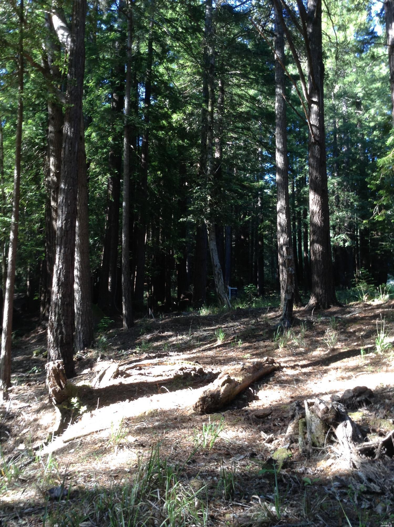 Listing 21816848 : 22047  Rust Drive, Timber Cove, CA, 95450  (photo 46)
