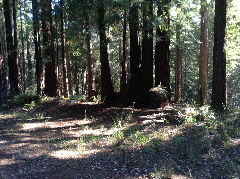 Listing 21816848 : 22047  Rust Drive, Timber Cove, CA, 95450  (photo 38)