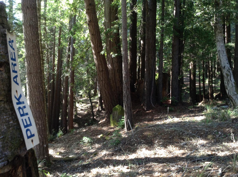 Listing 21816848 : 22047  Rust Drive, Timber Cove, CA, 95450  (photo 14)