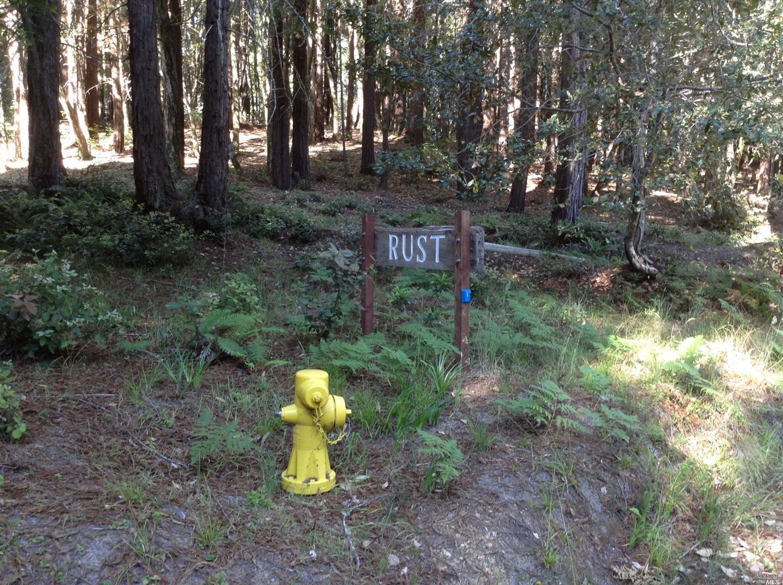 Listing 21816848 : 22047  Rust Drive, Timber Cove, CA, 95450  (photo 48)