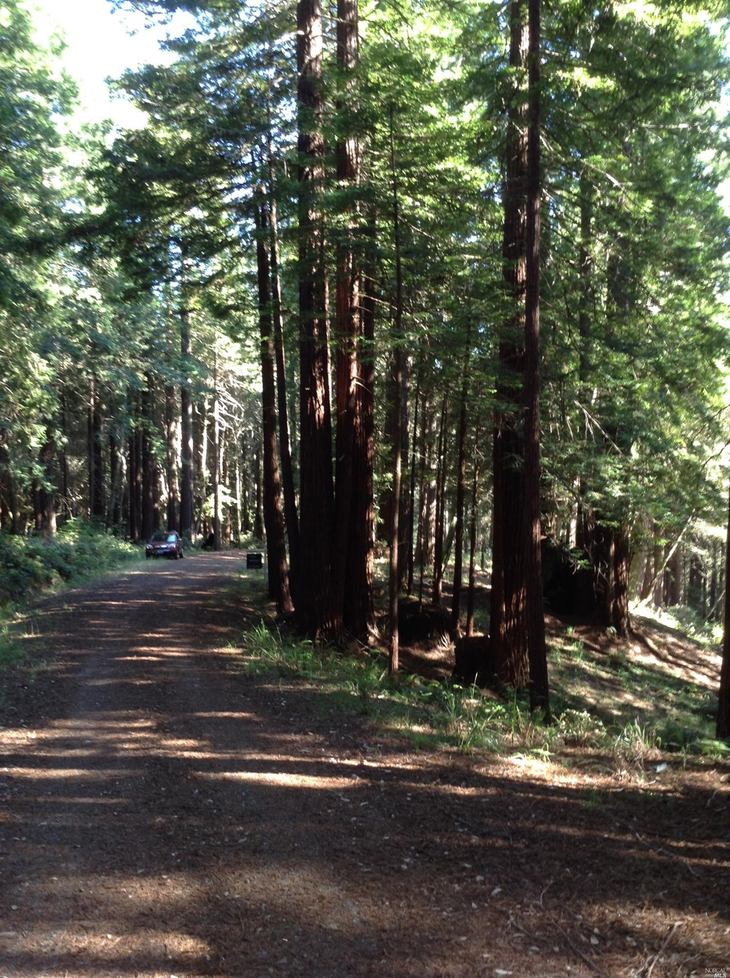 Listing 21816848 : 22047  Rust Drive, Timber Cove, CA, 95450  (photo 33)