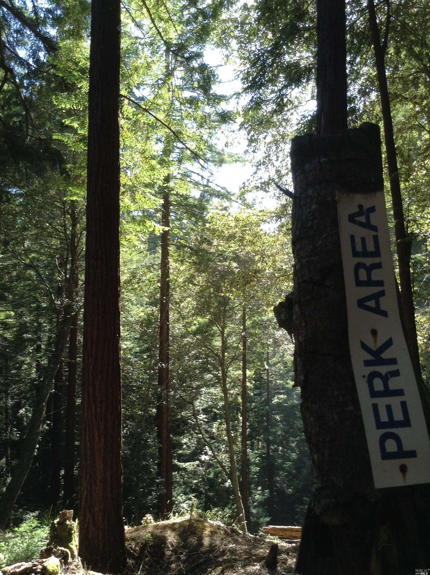 Listing 21816848 : 22047  Rust Drive, Timber Cove, CA, 95450  (photo 18)