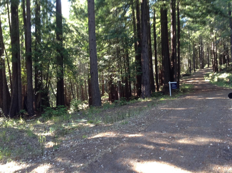 Listing 21816848 : 22047  Rust Drive, Timber Cove, CA, 95450  (photo 12)