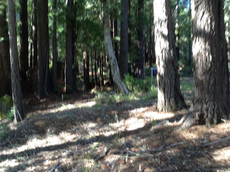 Listing 21816848 : 22047  Rust Drive, Timber Cove, CA, 95450  (photo 15)